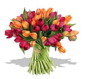 Фото. Цветы и букеты фото. Умение составлять букеты. Красивые букеты. Язык цветов. Тюльпаны