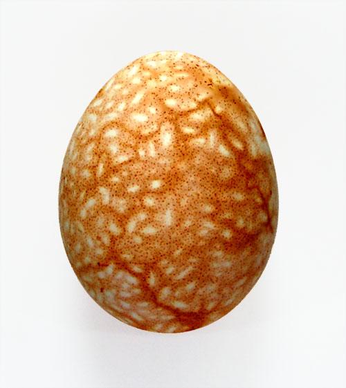 Пасхальное яйцо в крапинку