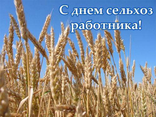 Открытка с днем сельхоз работников!