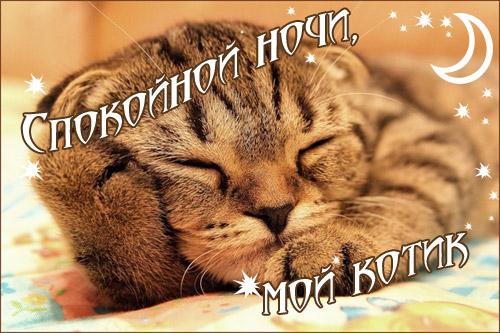 картинки парню с пожеланием спокойной ночи