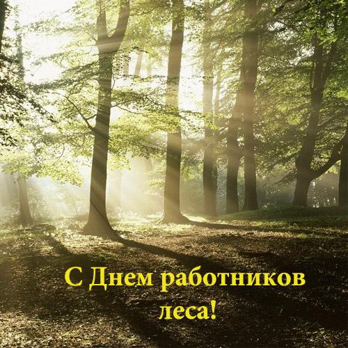 Мультики лего ниндзя го на русском