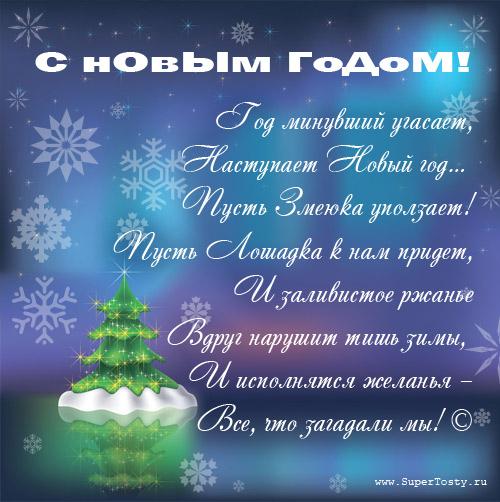 Поздравления с Новым Годом для Софьи (Софии). Новогодние ...