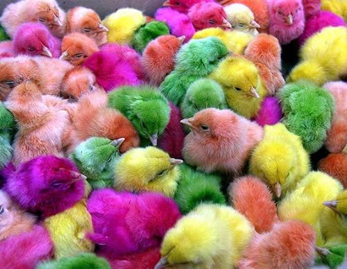 Разноцветной пасхи!