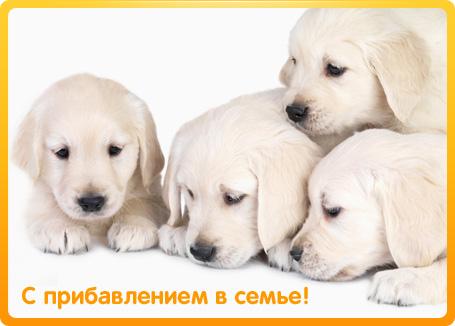 http://www.supertosty.ru/images/cards/s_pribavleniem_01.jpg