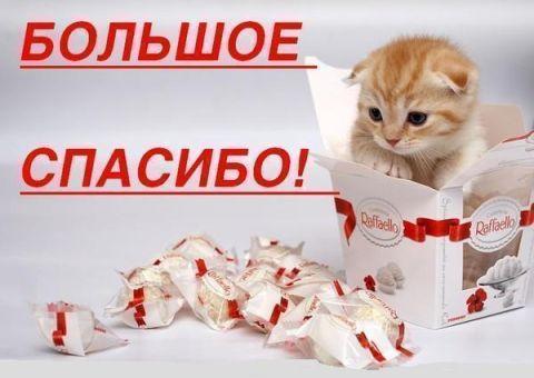 Большое спасибо! - открытка