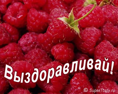 http://www.supertosty.ru/images/cards/vizdoravlivai_15.jpg