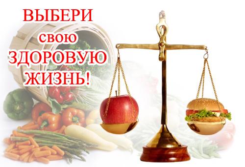 день здорового питания в беларуси 2016