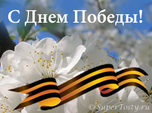 http://www.supertosty.ru/images/other/9may.jpg